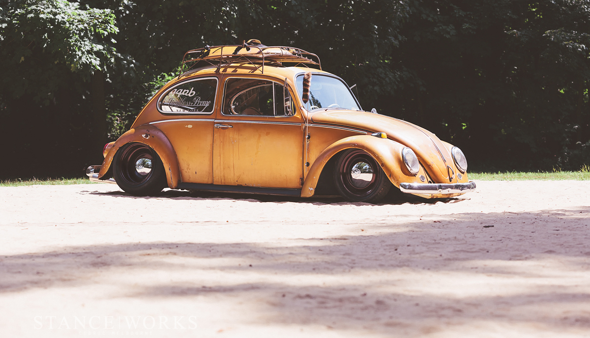 Yellow Blue Rusted Paint Beetle
